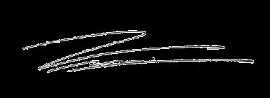 signature Daniel - Business- & Kommunikations-Skills
